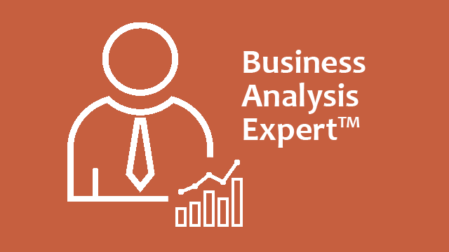 Business Analysis Expert™